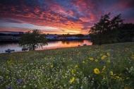 goroda---pejzazhi-cvety-lug-zakat-reka-901766.jpg